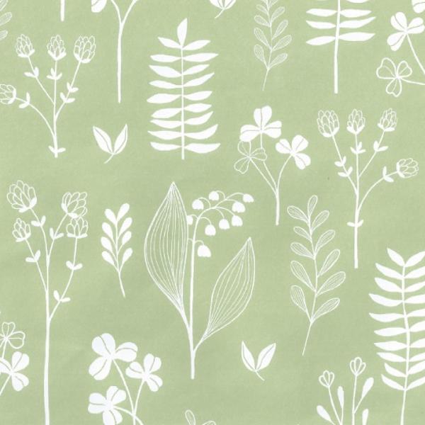 Matte Vintage Green Wrapping Paper 57cm x 160m