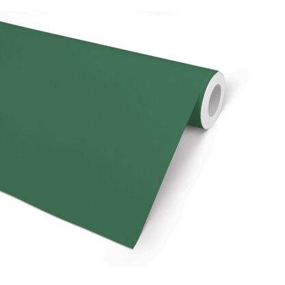 Green Gloss Wrapping Paper
