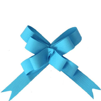 Pale Blue Matte Pull Bow 19mm