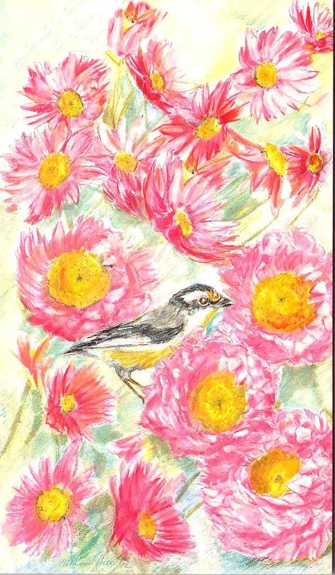 Card Rosy Sunray