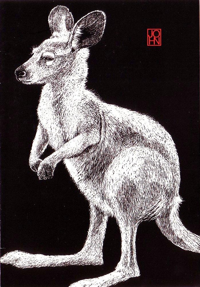 Card B+W Kangaroo