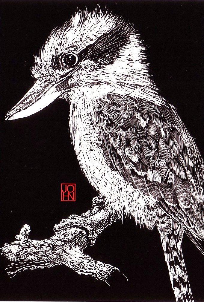 Card B+W Kookaburra