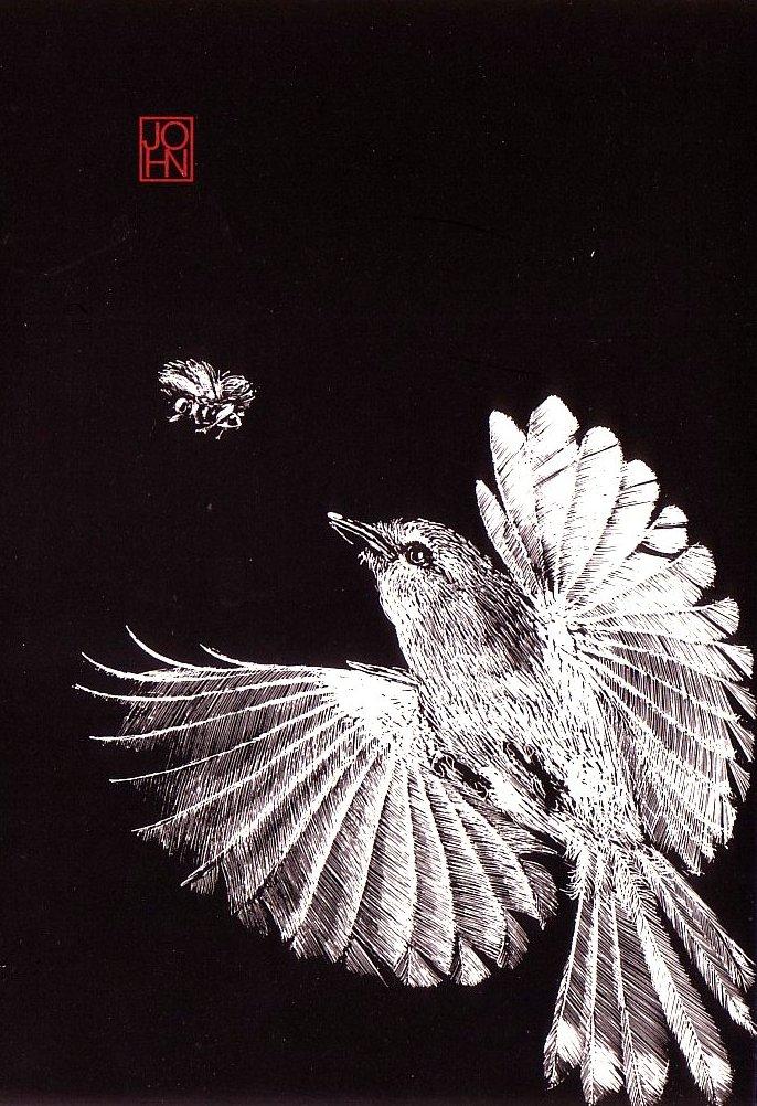 Card B+W Fairy Warbler