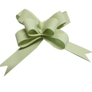 Mint Matte Pull Bow